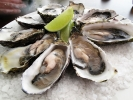 800px-Pacific_oysters